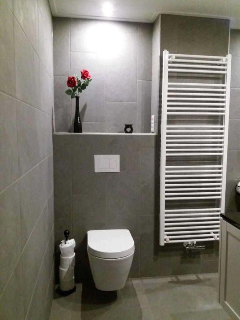 badkamer grijs toilet